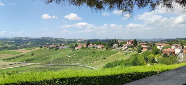 Rustico/Casale in vendita a Vigliano d'Asti, Extraurbana, Con giardino, 346 mq - Foto 31