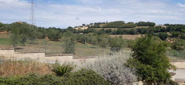 Rustico/Casale in vendita a Montecosaro, Arredato, con giardino, 250 mq - Foto 6