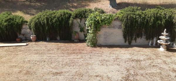 Rustico/Casale in vendita a Montecosaro, Arredato, con giardino, 250 mq - Foto 7