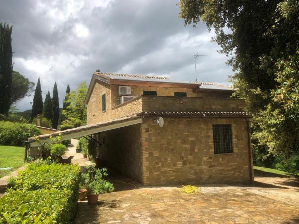 Locale Commerciale  in vendita a Assisi, Assisi, Con giardino, 266 mq - Foto 1