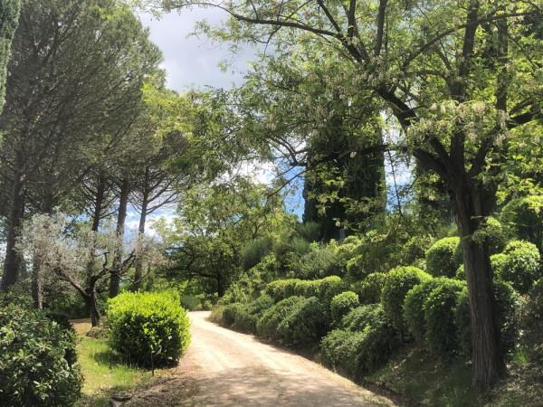 Locale Commerciale  in vendita a Assisi, Assisi, Con giardino, 266 mq - Foto 12