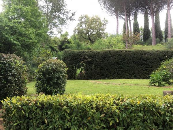 Locale Commerciale  in vendita a Assisi, Assisi, Con giardino, 266 mq - Foto 5