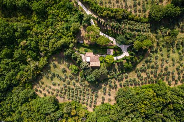 Locale Commerciale  in vendita a Assisi, Assisi, Con giardino, 266 mq - Foto 25