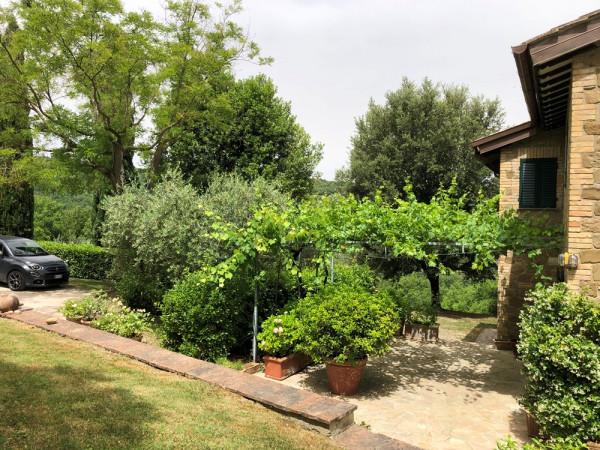 Locale Commerciale  in vendita a Assisi, Assisi, Con giardino, 266 mq - Foto 13