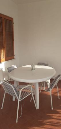 Appartamento in vendita a Casal Velino, Centrale, Con giardino, 65 mq - Foto 5