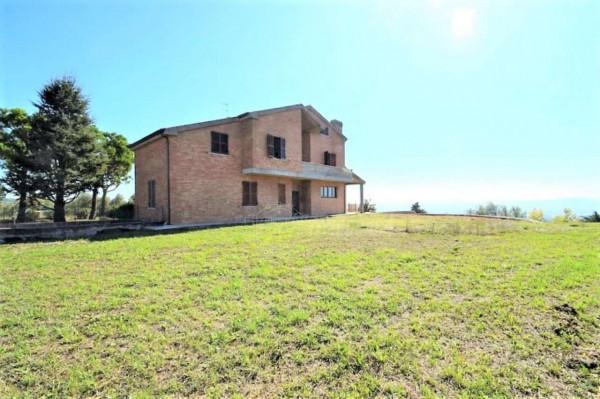 Villa in vendita a Morrovalle, Arredato, con giardino, 400 mq - Foto 6