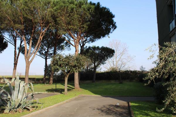 Appartamento in vendita a Roma, Dragoncello, Con giardino, 80 mq - Foto 4