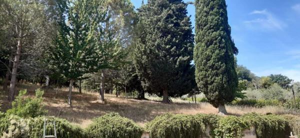 Rustico/Casale in vendita a Montecosaro, Arredato, con giardino, 250 mq - Foto 12