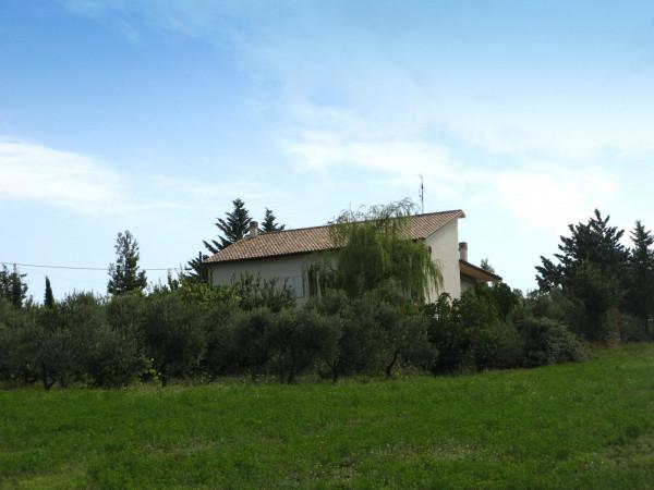 Villa in vendita a Bolognano, Frazione, Con giardino, 300 mq - Foto 20