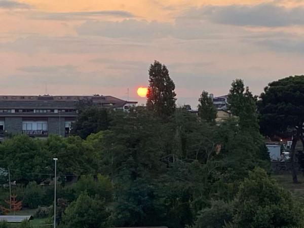 Appartamento in vendita a Roma, Acilia, Con giardino, 90 mq - Foto 9