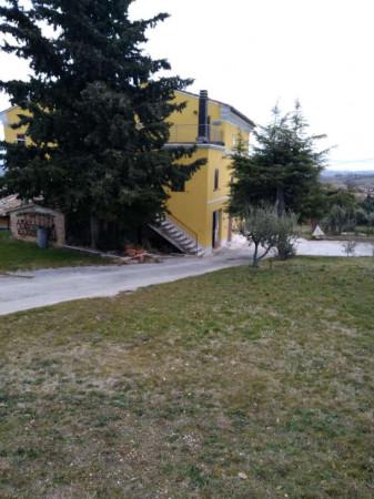 Rustico/Casale in vendita a Macerata, Urbisaglia, Arredato, 300 mq - Foto 5