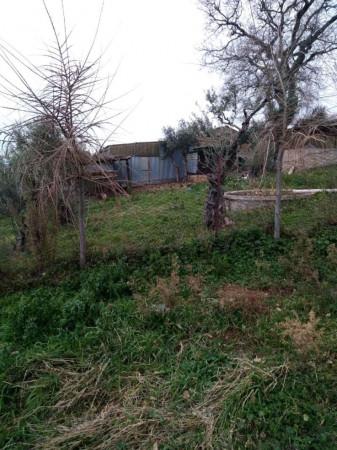 Rustico/Casale in vendita a Macerata, Urbisaglia, Arredato, 300 mq - Foto 7