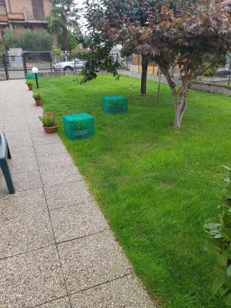 Appartamento in vendita a Torrevecchia Pia, Residenziale, Con giardino, 89 mq - Foto 6