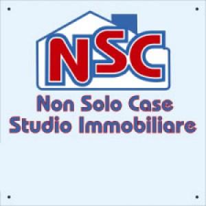 Logo Non Solo Case