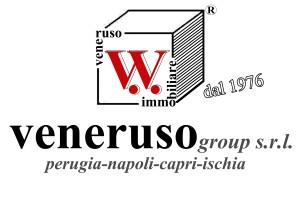 Logo veneruso group srl